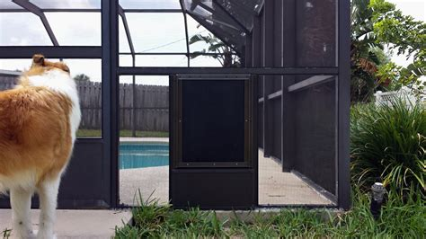 Doggie Door Screen Patio Door I Do That Screen Repair Candlewood Ponce Inlet Pet Screen Door Pet Screen Doors