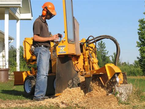 how does home depot stump grinder rental service saves