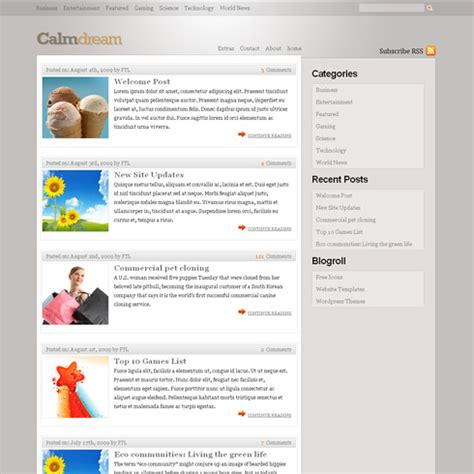 free wordpress theme calmdream web design survivalist