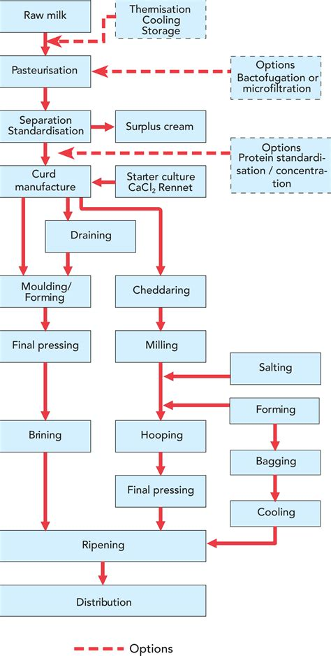 cottage cheese factory cheese dairy processing handbook