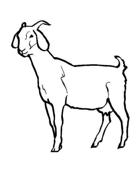 coloring pages of goat image of a goat coloring home