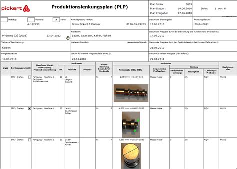 layout design software deutsch control plan mit der software rqm von pickert partner