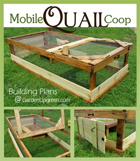 the mobile quail coop for the backyard or
