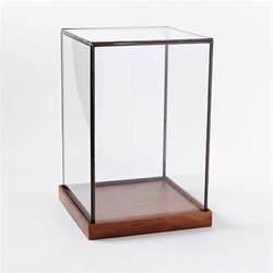 Display Cases For Glass Wood Glass Display Cases West Elm