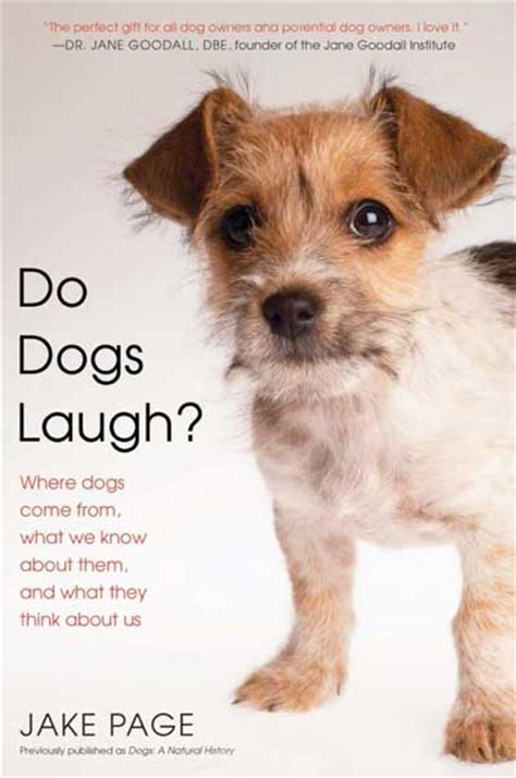 do dogs laugh dogs ethics quot a nuanced moral system quot say historian jake page and animal