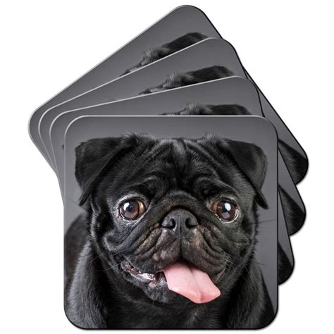 name of pug in in black black pug coasters available in two designs i pugs