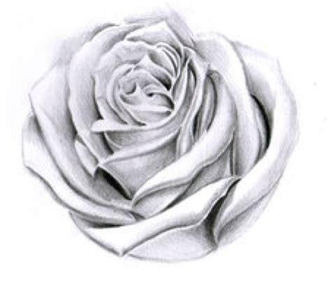 rose shades by willemxsm on deviantart tattoo devis