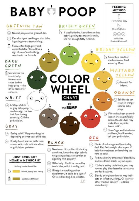 Color Of Newborn Stool by 7 Charts That Make New Parenthood So Much Easier