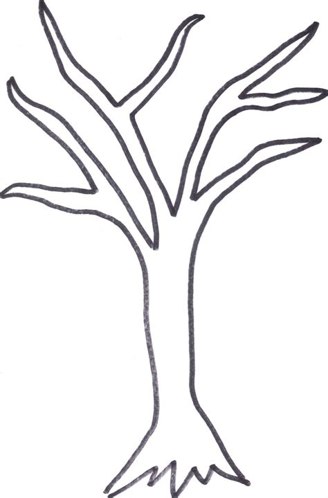 coloring page tree trunk bare tree outline coloring pages