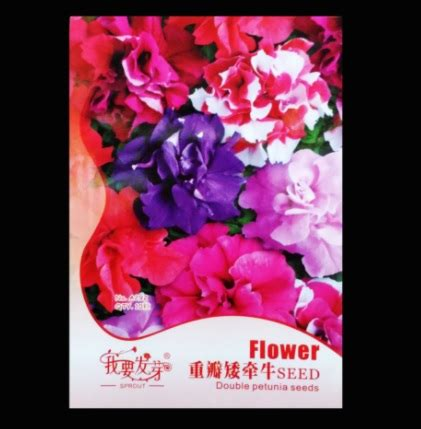 Bibit Bunga Petunia benih petunia petal mixed 10 biji retail asia