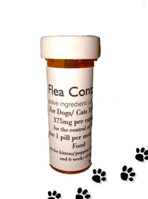 lufenuron for dogs dogs 31 60 lb healthyhomepets