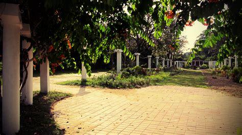penang botanical garden penang isle naturescape from the botanical garden