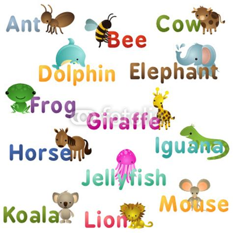 7 Letter Word Animal Names Related Keywords Suggestions For Names Of Animals A Z
