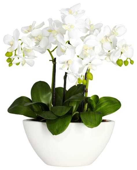 Silk Flowers In Vase Arrangements by Phalaenopsis With White Vase Silk Flower Arrangement Transitional Artificial Flowers Plants