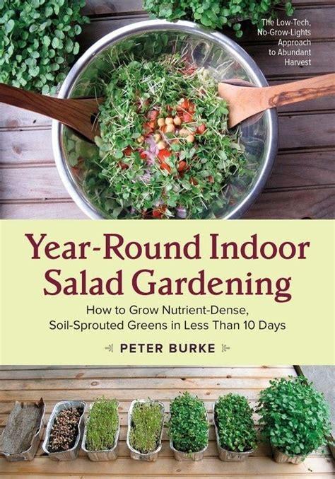 year vegetable gardening 25 best ideas about gardening on growing vegetables how to grow vegetables