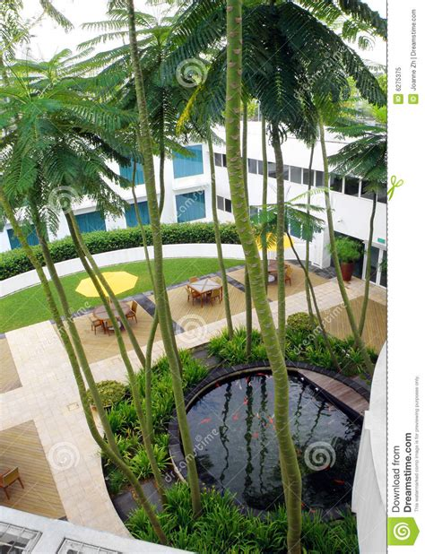 Rooftop Plants roof top garden design royalty free stock photo image
