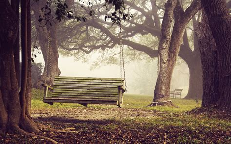 Leaf Chair Swing Bench Full Hd Wallpaper And Background 2560x1600 Id 349322