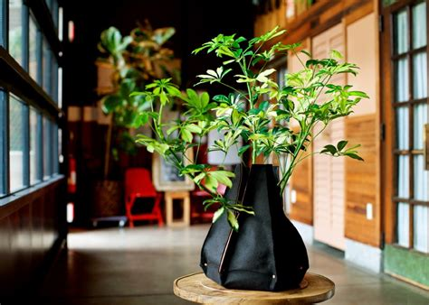 indoor garden containers soft sided planters and indoor gardening woolly pocket v