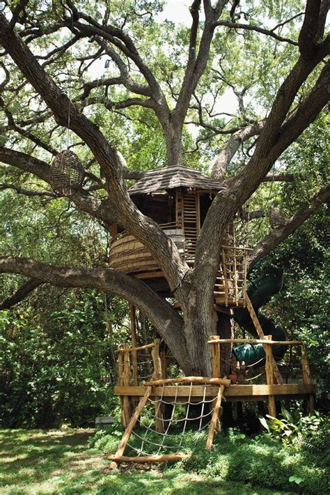 best treehouse 30 best treehouses images on pinterest treehouses tree