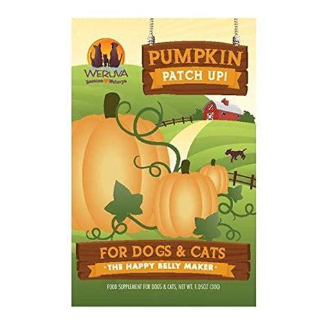 pumpkin puree for dogs weruva pumpkin patch up pumpkin puree pet food supplement for dogs cats 1 05oz