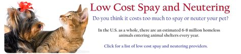 cost to neuter a low cost spay neuter