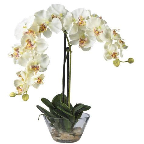 decorative vase vases flower vase flowers orchid white nearly natural double phalaenopsis with glass vase silk