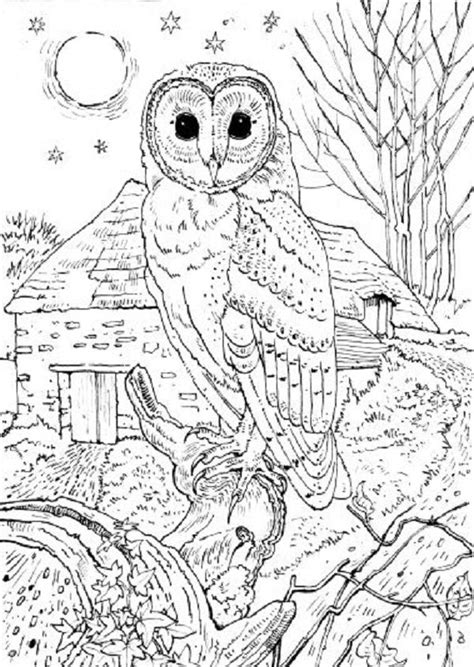 detailed christmas coloring pages for adults 1000 images about coloring on pinterest coloring