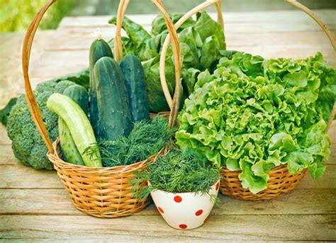 carenza di ferro alimentazione carenza di ferro e calcio nella dieta crudista