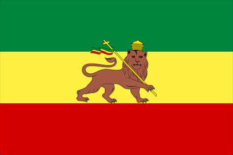 flags of the world lion ethiopia flag with lion of judah former african flags
