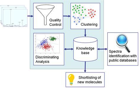 pattern lab workflow diagnoprot