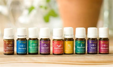 google images young living essential oils young living essential oils a scam