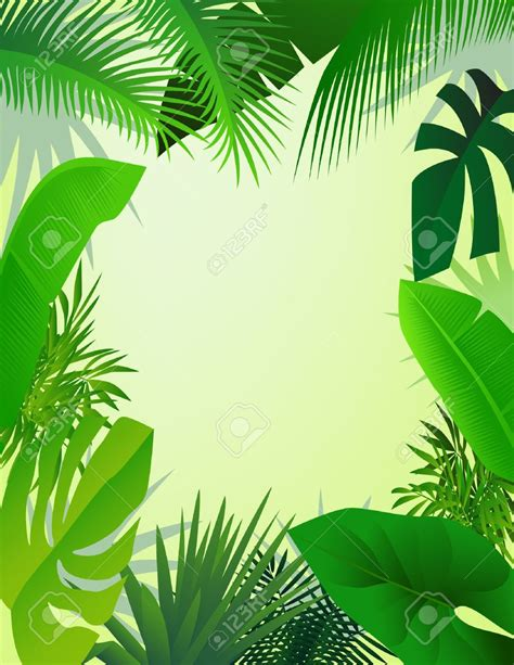 jungle clip jungle frame clipart clipground
