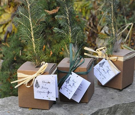 Wedding Favors Trees by Tree Seedling Wedding Favors 171 Plant A Memory