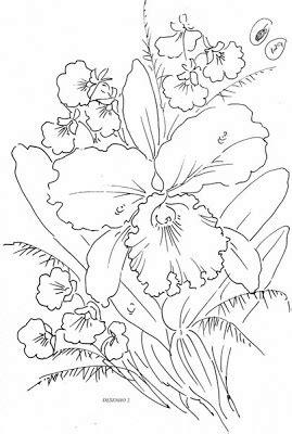 flores imgenes orquideas dibujo para colorear orquidea