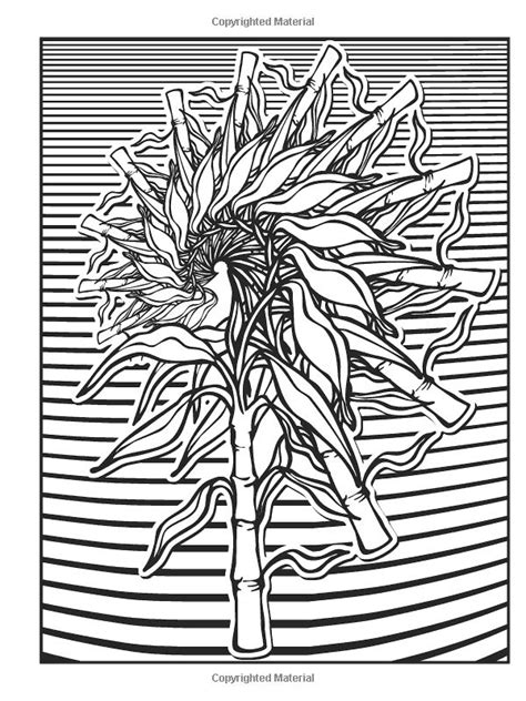 fractal coloring book nature fractals coloring book coloring pages