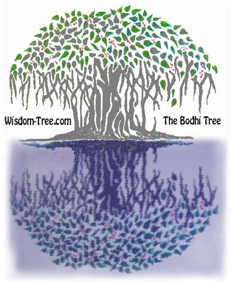symbolism of a tree the bodhi tree meditation the symbol of the bodhi tree