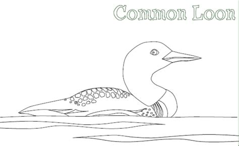 Loon Coloring Page free loon coloring pages