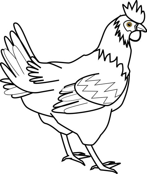 chicken head coloring page clipart chicken line art davidone chicken