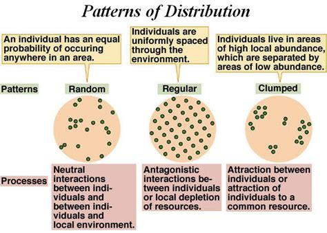 dispersion pattern definition biology apbiologywiki ecology