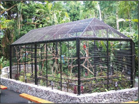 How to build a garden aviary   DIY Advice Help Guides