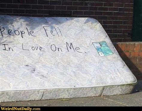 What Of Mattress Is Best For Me by Pictures Weirdnutdaily Mr Loooove Mattress