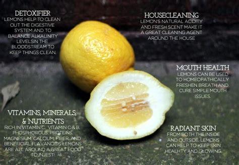 Ya Tree Detox by Lemon Benefits How To Use Lemons For Everything