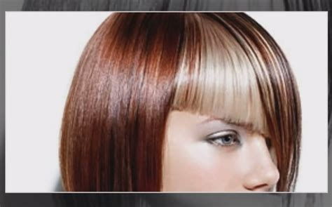 hairdressers dunedin prices hair highlighting ideas for 2013 total image hair