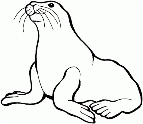 underwater sea life coloring pages sea life coloring page coloring home