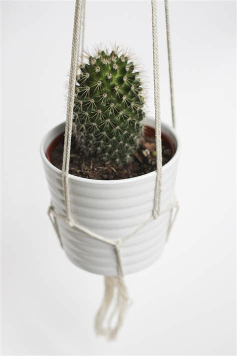Diy Rope Hanging Planter - diy hanging cactus plant with ropes house design and decor