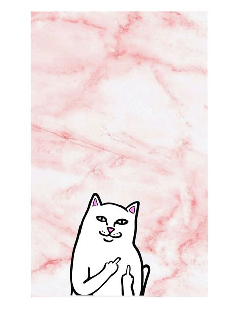 ripndip wallpaper cat 17 best images about wallpaper for phone on pinterest
