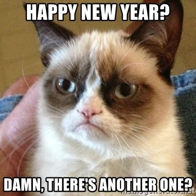 Happy New Year Cat Meme - happy new year damn there s another one grumpy cat