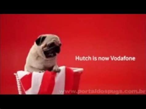 vodafone pug ad vodafone quot hutch is now vodafone quot inser 231 245 es curtas de tv propaganda pug