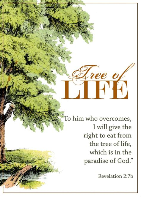 scripture tree the biblical tree of bounty of blessings tree of