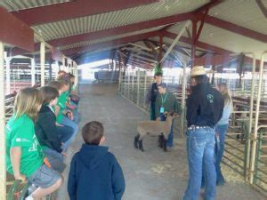 Logan County Records Economic Benefit Of 4 H To Local State Economy Source Colorado State